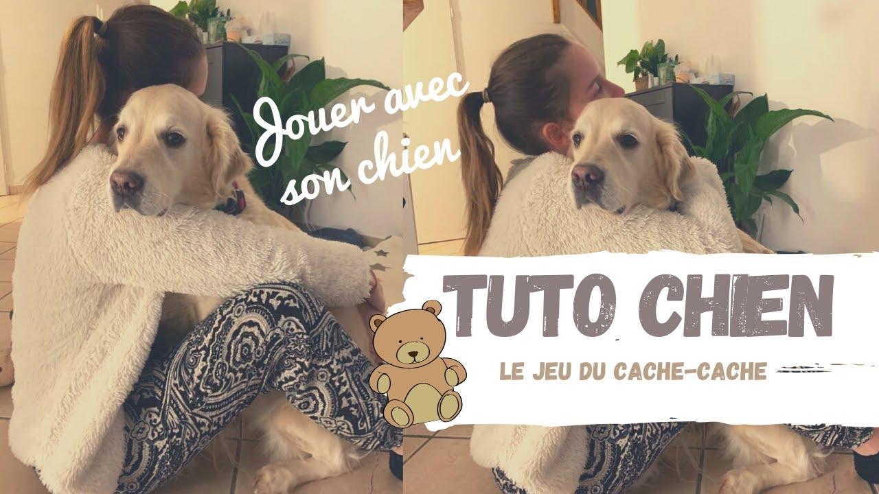 TUTO CHIEN - Jeu du Cache-Cache