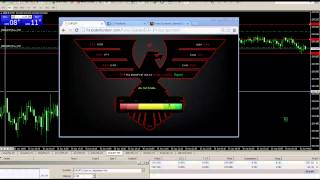 HOW TO SCALP FOREX GUIDE  PART 2 ADVANCED TRADING TACTICS | PRICE ACTION | HEDGING