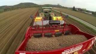 Potato Planting in Switzerland