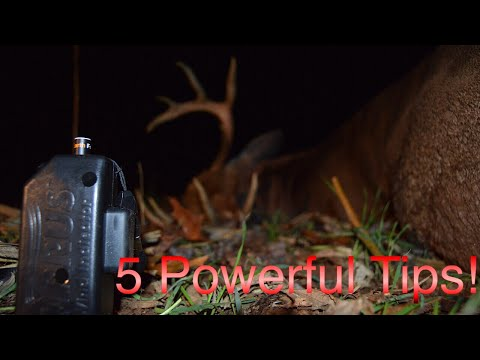 5 Powerful Tips For Better Deer Hunting Success!