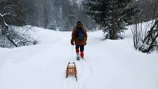 Sypie Śnieg - Gracjan Roztocki