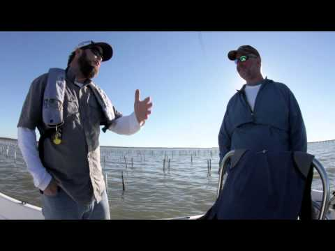 For The Love Of Oysters: Alabama's Oyster Farmers