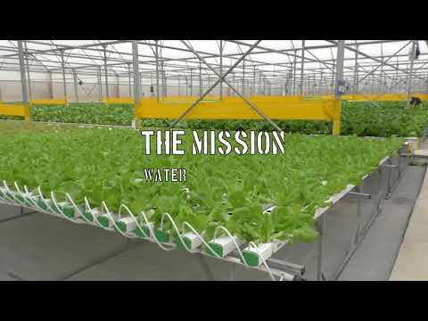 Vineco (Vietnam) Greenhouse Project by TAProjects