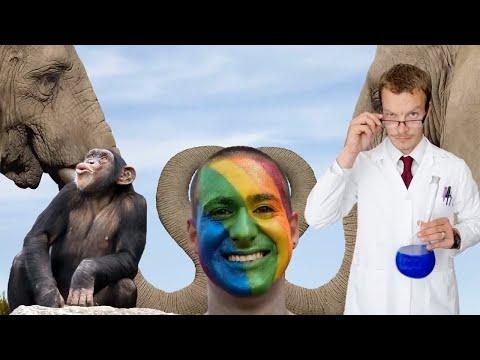 Вопрос: Как гомосексуализм объясняется среди животных?