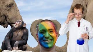 Гомосексуализм животных — не всё так просто