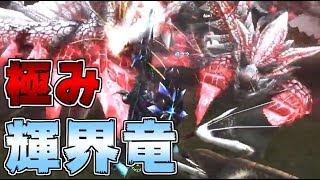 【MHF-Z実況】極みゼルレウス降臨!早速マルチで撃退してみた thumbnail