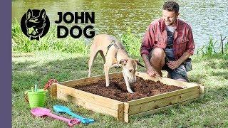 Jak oduczyć psa kopania dziur? – TRENING PSA – John Dog