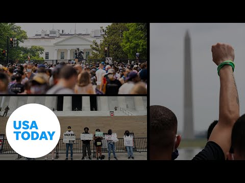 Large demonstrations in Washington D.C. anchor weekend of protests | USA TODAY