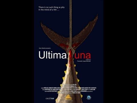ULTIMATUNA, The Reproductive Orgy Of The Tuna