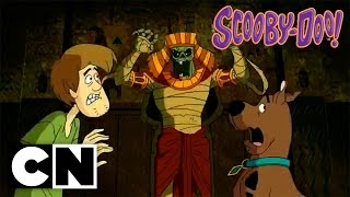 Scooby-Doo! in Where