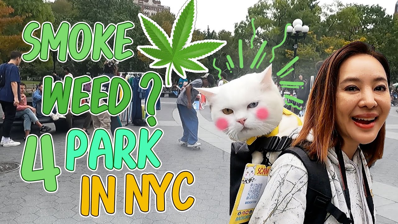 Smoke weed ? 4 park in NYC | Backcatter