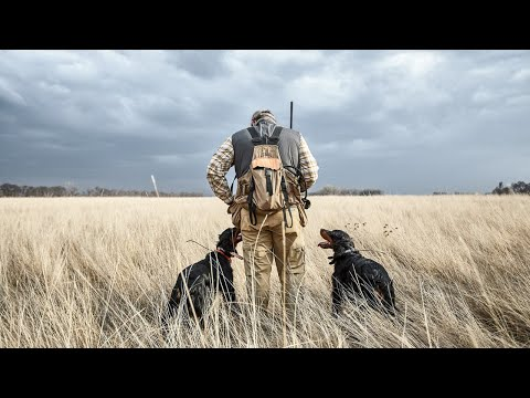 Something Special | SCHEELS Upland Hunting Expert