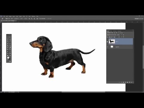 Learn Photoshop in 1 Hour  [ Part 2]