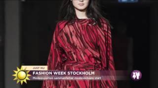 I dag startar Stockholm Fashion Week - Nyhetsmorgon (TV4)