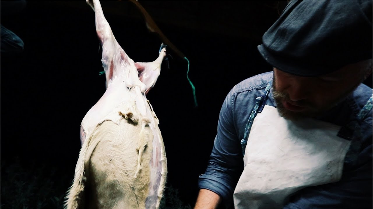 the-hard-reality-of-farm-life-killing-our-sheep-before-the-parasites-d