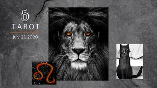 Rest, Intuition & Strength ~ fine start to Leo season!