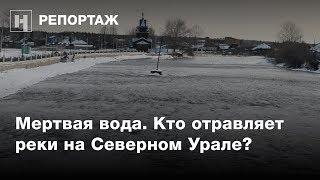 Мертвая вода. Кто отравляет реки на Северном Урале?