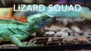 Hackers: Who Is the Lizard Squad?