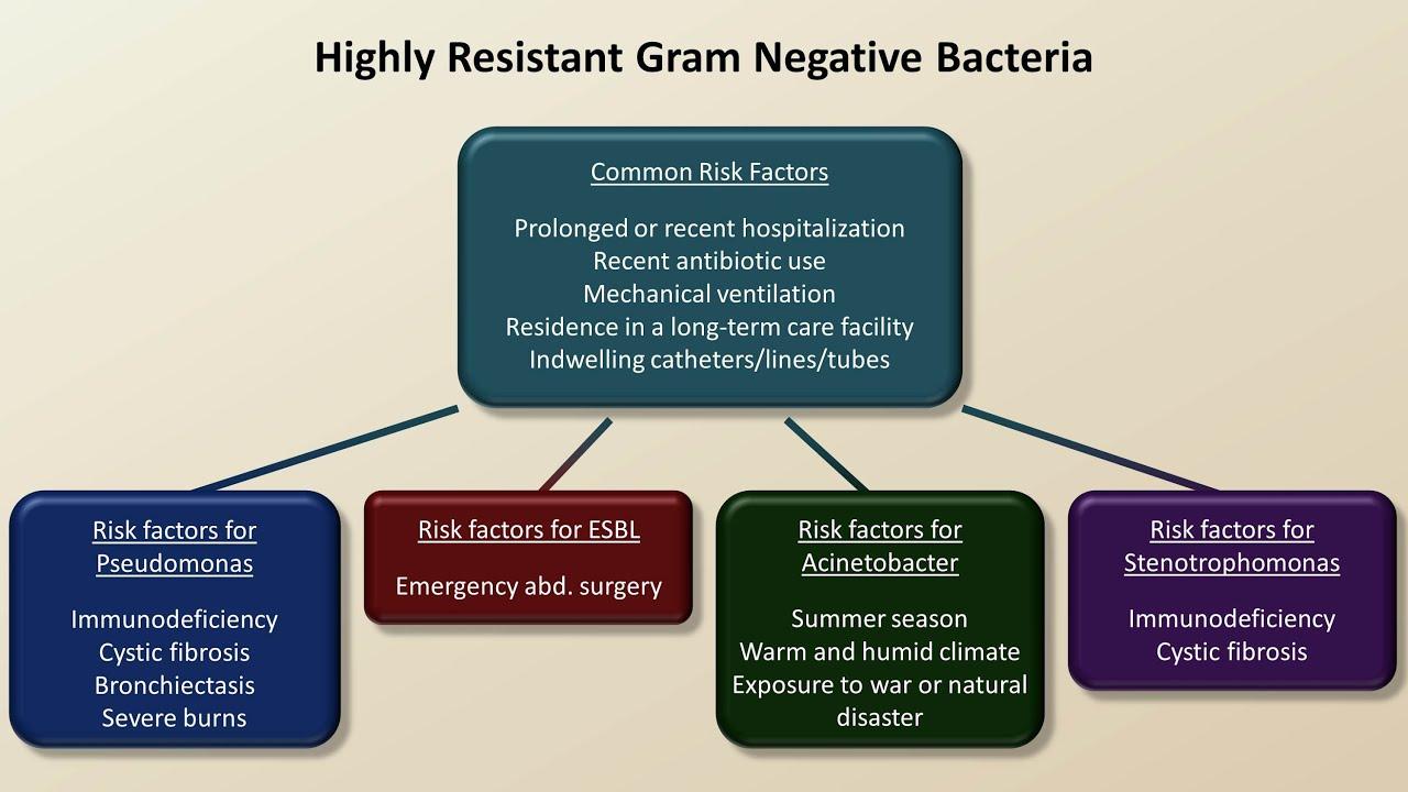 list of gram negative and gram positive antibiotics