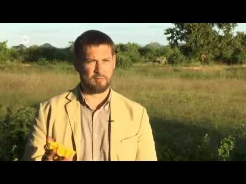 Little Sun – a solar solution. Produced by Wolf Gebhardt for Deutsche Welle, Eco@Africa 2016