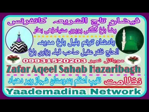 Zafar Aqeel Sahab Hazaribagh__ woh Hai Sarkaar Ka Dar_ Faizane Tajussariya Confarence Gangti