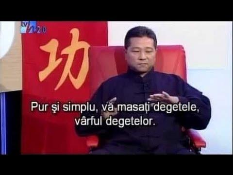 Interview with International qigong Master Lin Kai Ting (USH - Matei Georgescu)