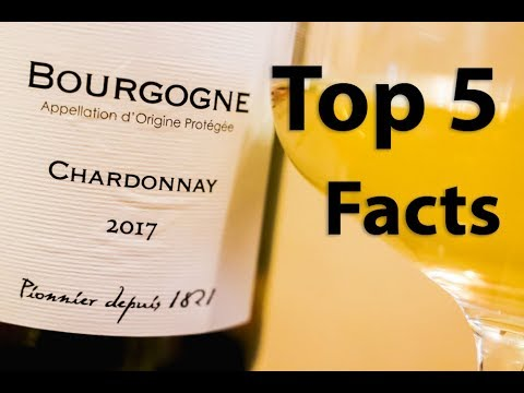 wine article Chardonnay Guide  5 Facts You Should Know About The Most Famous White Wine