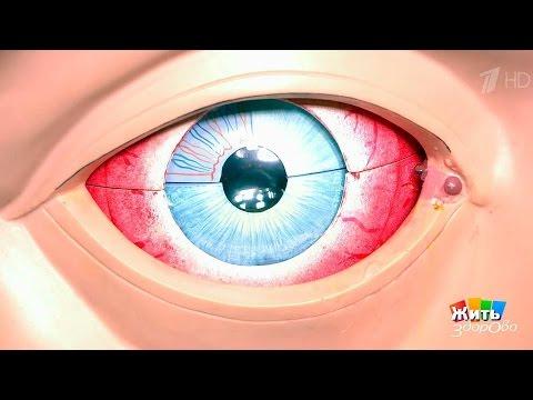 Конъюнктивит глаз у взрослых – лечение, симптомы