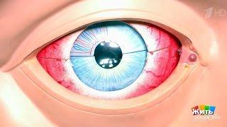 Жить здорово! Почему унас глаза красные? (24 05 2017)