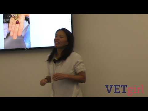 Veterinary Treatment Of Grapes And Raisin Poisoning/toxicity In Dogs