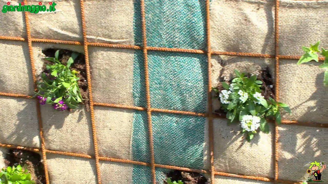 Cura e manutenzione del giardino verticale doovi - Piante per giardino verticale ...