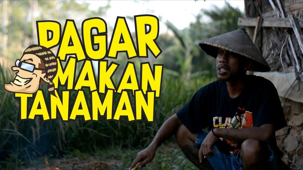 Pagar Makan Tanaman   Film Komedi Cah Pati   YouTube