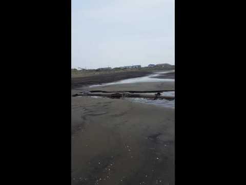 Все нечистоты города Поронайска Сахалинской области сливаются в море.