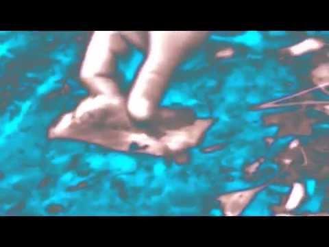 Bôa - Duvet (ScummV Remix)