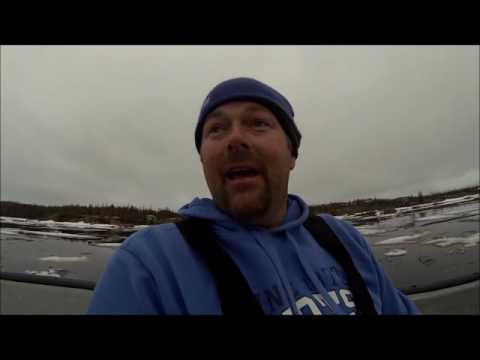 Bearded Seal Hunt & A Old Time Tradition....
