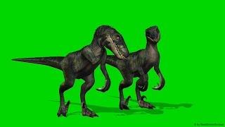 Velocirapor Dinosaurs  green screen