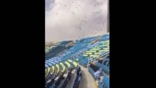 – بالفيديو.. عاصفة تفسد تيفو جمهور التعاون قبل مواجهة لوكوموتيف