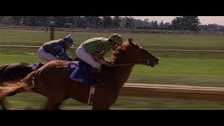 Download Dreamer: Inspired by a True Story - Soñador Winning The Breeders' Cup (HD)