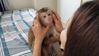 Monkey Baby Nui Nui spend beauty with her mother