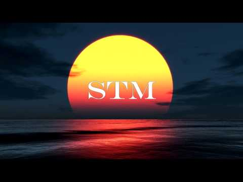 STM - Julian le Play - Rollercoaster - Kygo Edit / Rediger - 4K