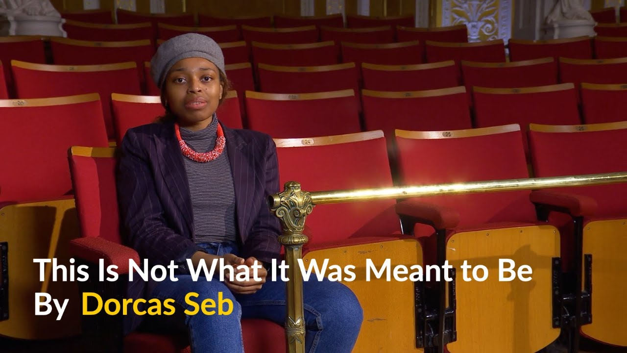 This Is Not What It Was Meant to Be by Dorcas Seb