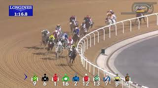 Vidéo de la course PMU AL MAKTOUM CHALLENGE R1 (PELOTON A)