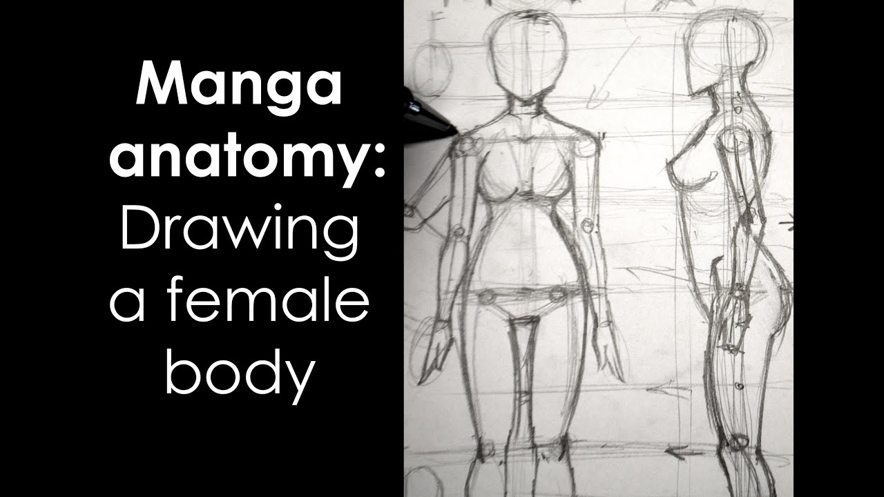 Manga anatomy how to draw female body full lesson
