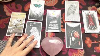 Cancer *Next Major Love Relationship* Love Tarot Reading for Year