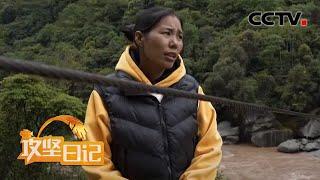 《攻坚日记》 20200525 溜索下的故事(4)|CCTV农业