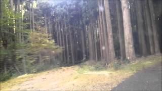 伊豆半島ツーリング  静岡県道59号から丹野平まで
