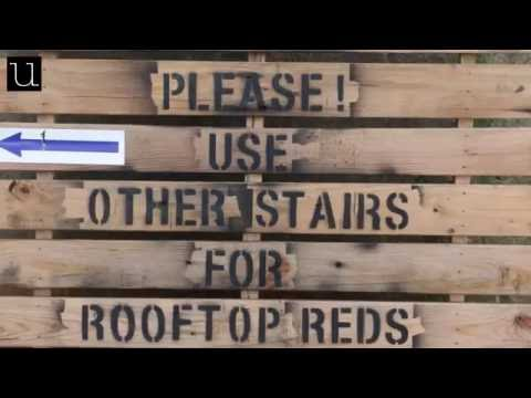 Take a Tour with Rooftop Reds at the Brooklyn Navy Yard
