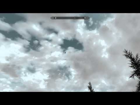 Weird Flying Sabertooth Tiger SKYRIM Funny as hell