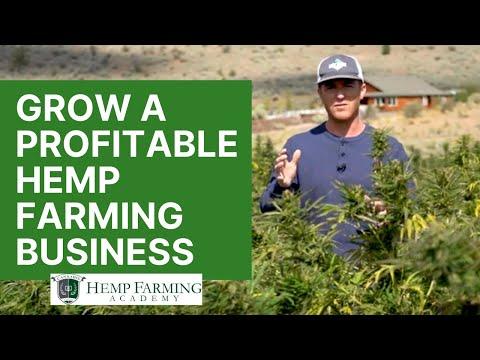 My Hemp Farming Story – How to start a profitable CBD hemp farm in 2020
