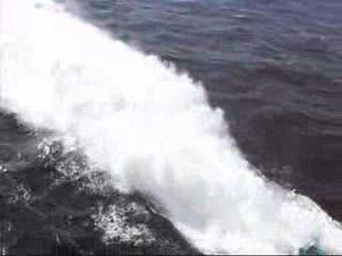 High Speed Sea Service